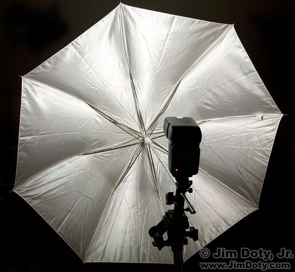 Umbrella, flash, and flash bracket on a tripod.