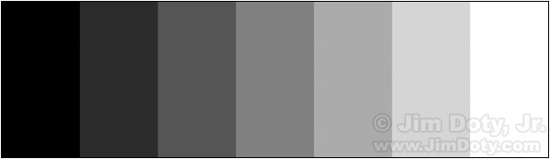 A 7 step gray scale with middle gray in the middle.