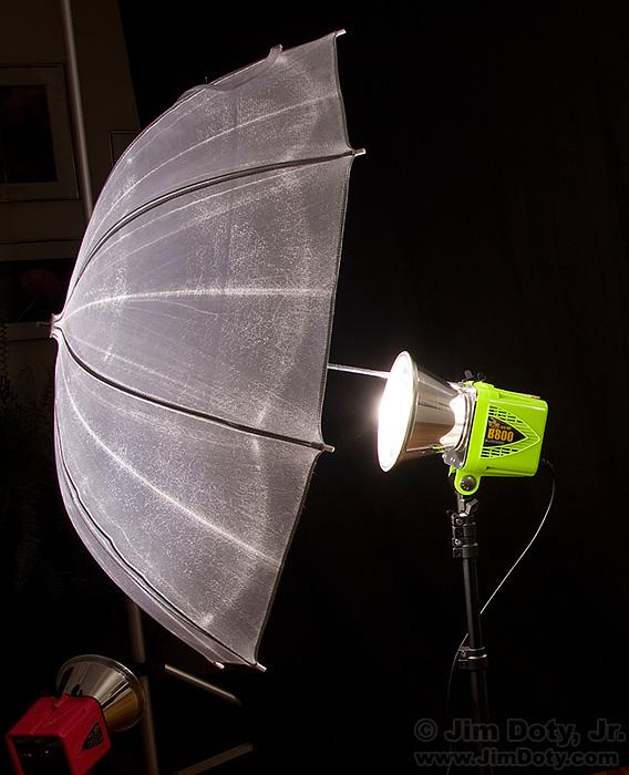 Alien Bees B800 Lighting Kit: POTD: Sarah (How To Do A Fitness Portrait)