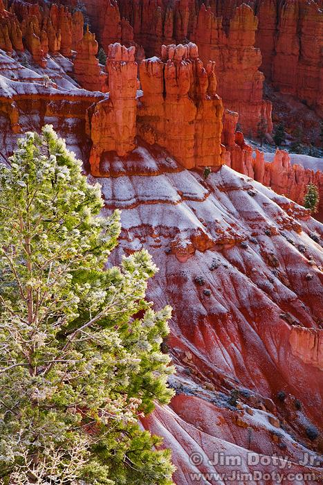 Early Morning Snow at Bryce Canyon