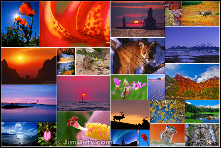 Nature photography by Jim Doty, Jr.