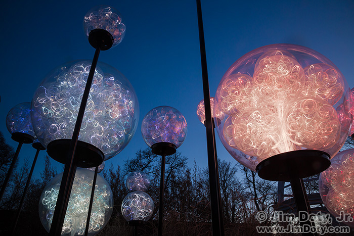 Bruce Munro: Light. Franklin Park Conservatory