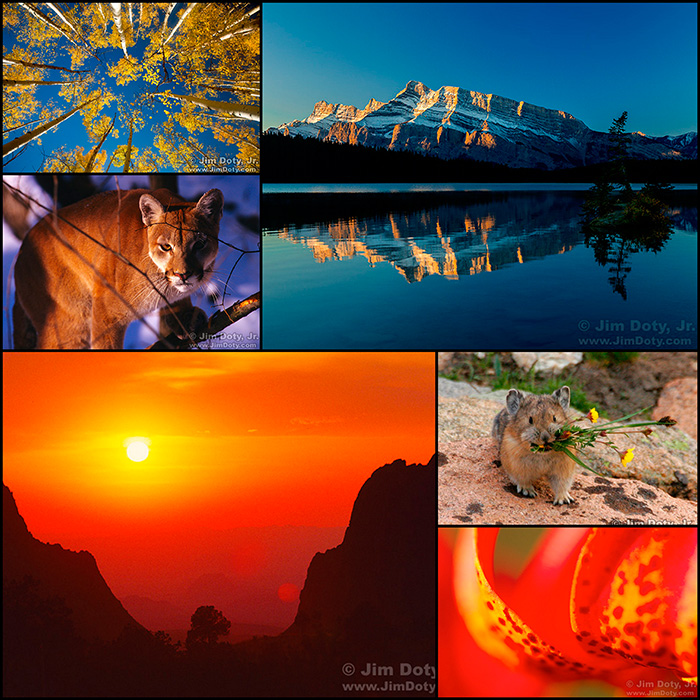 Nature Photography Workshop in Colorado