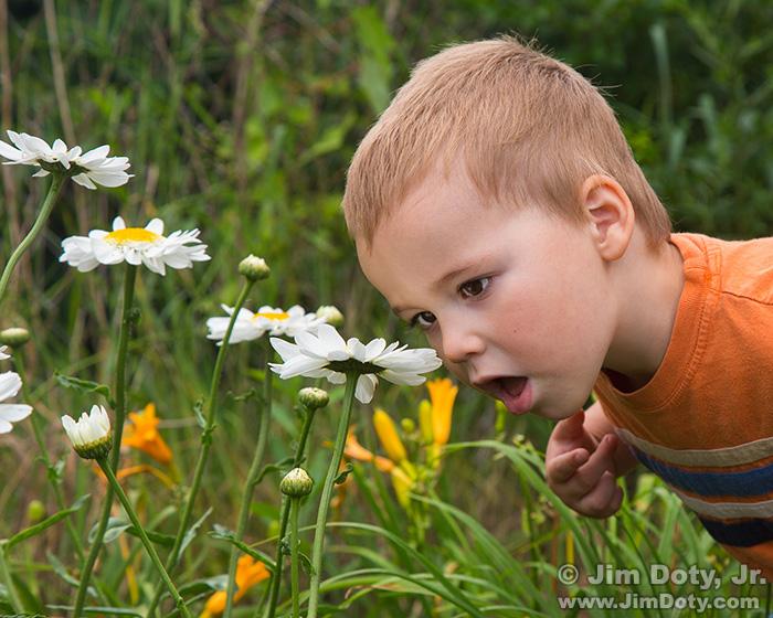 Terran in the Garden