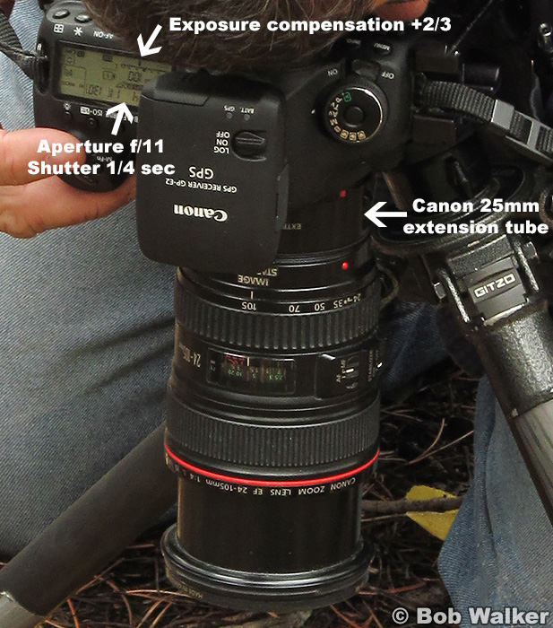 Equipment and camera settings.