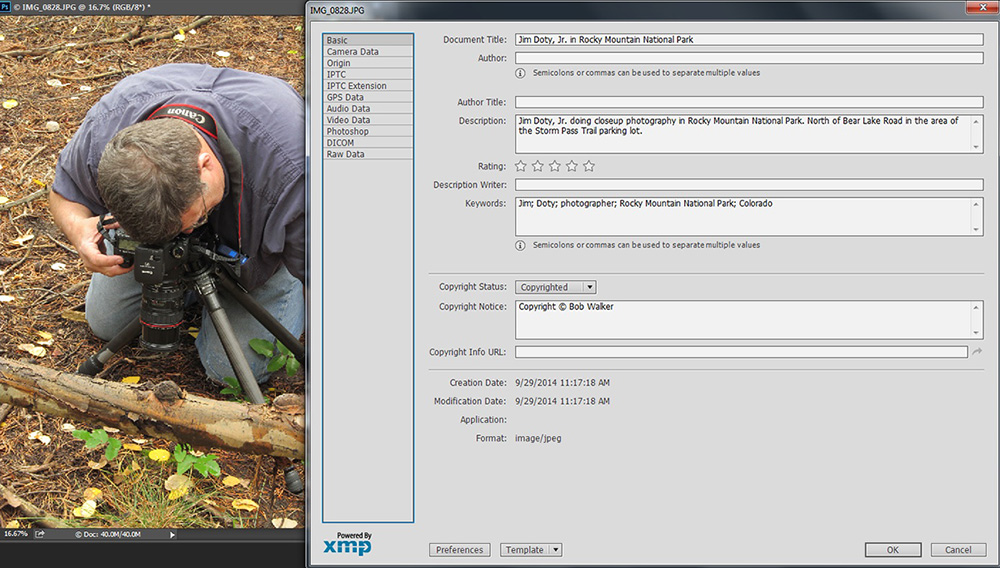 Metadata panel in Photoshop