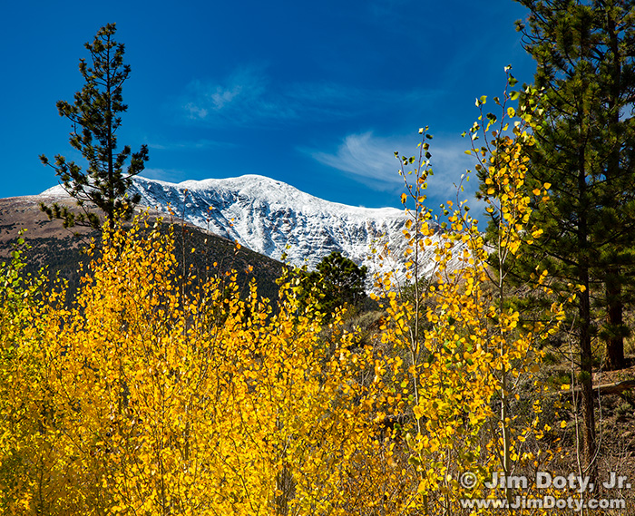 Aspen, Mt. Ouray from O'Haver Lake