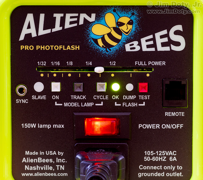 Alien Bees B800 studio flash set to 3/8 power.