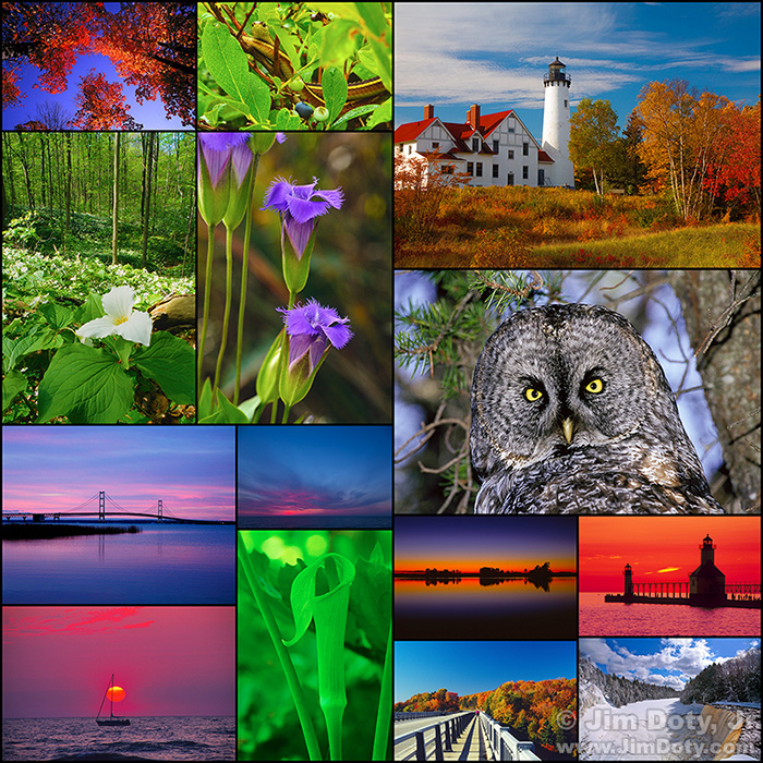 Michigan Nature Collage