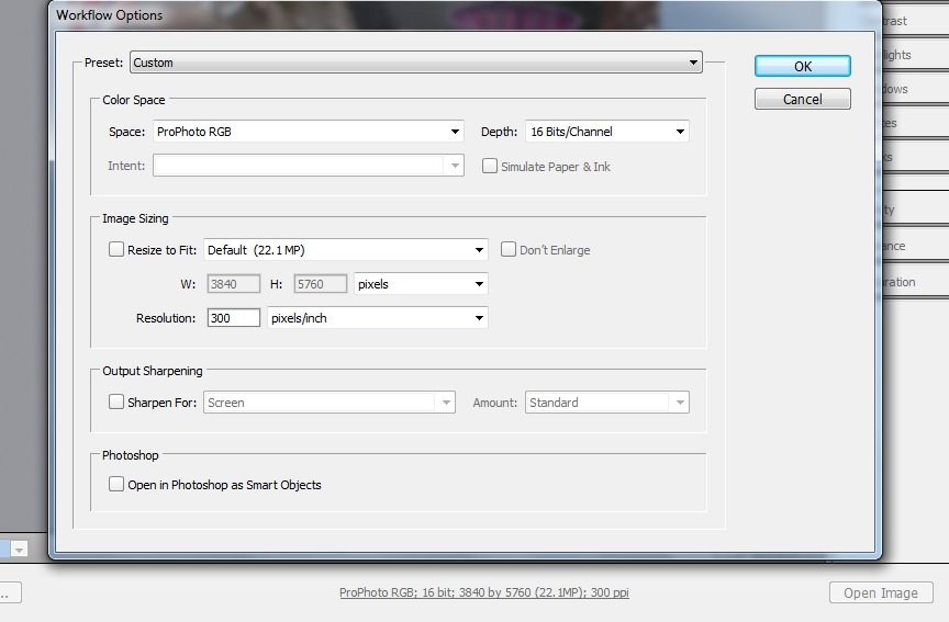 Workflow Options Window