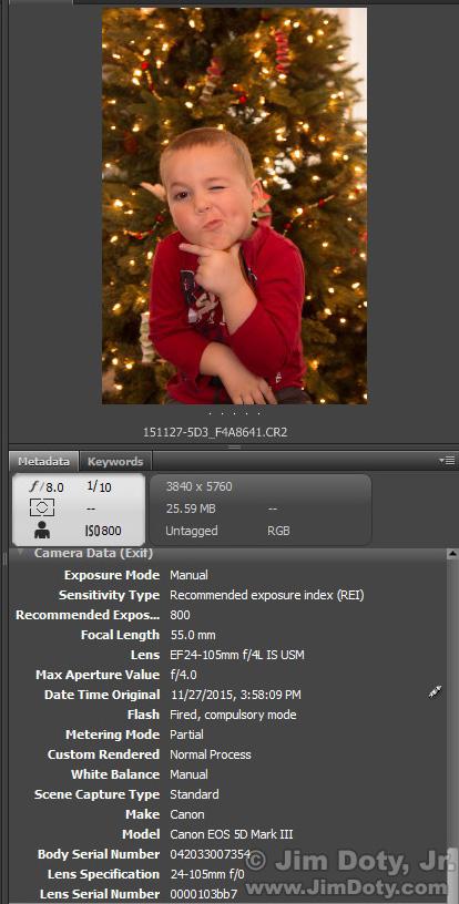 Metadata from Adobe Bridge