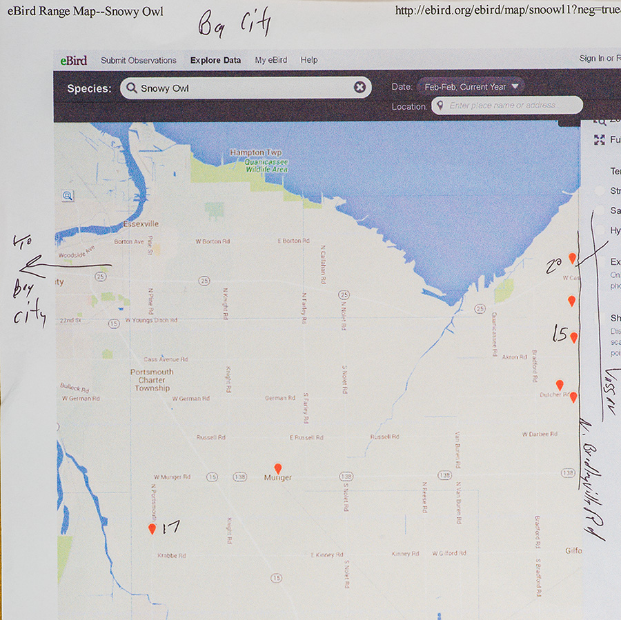 Snowy Owl sighting map. Akron Michigan area east of Bay City. Click for a much larger version.