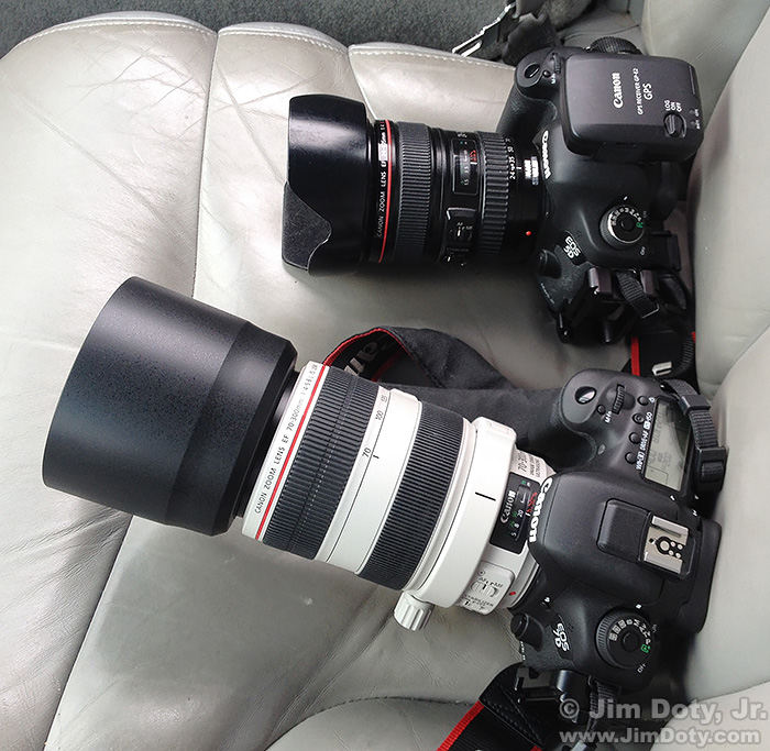 Canon 5D Mark III and Canon 7D Mark II