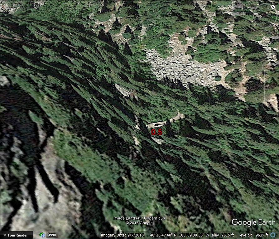 Google Earth simulated 3D image of trees on a hillside.