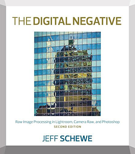 The Digital Negative, 2nd edition