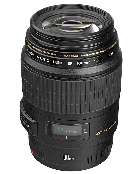 Canon 100mm f/2.8 Macro Lens