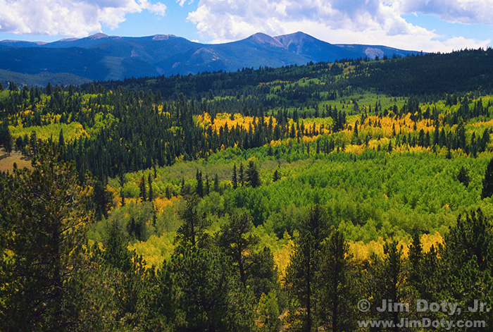 Aspen, Porphyry Peak and the Sangre de Cristo Mountains