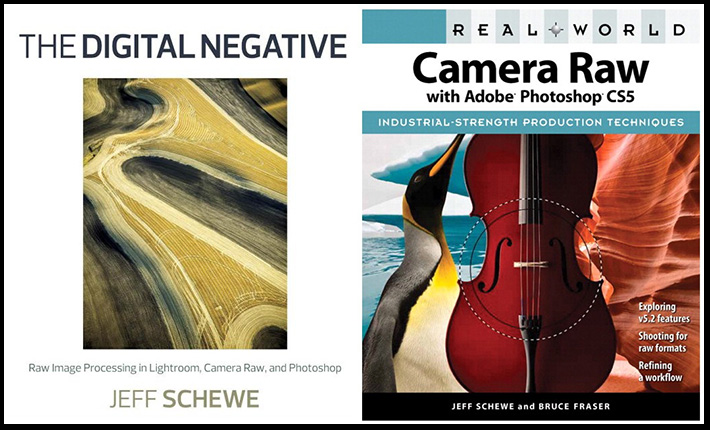 Jeff Schewe and Bruce Fraser on RAW Camera Files