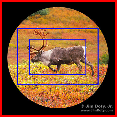 Caribou, image circle, sensor sizes