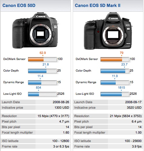 Canon 50D and Canon 5D Mark II compared