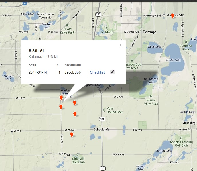 Snowy Owl Sightings south of Kalamazoo-Portage Michigan